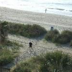 Riptide Beach Club Myrtle Beach Ocean View